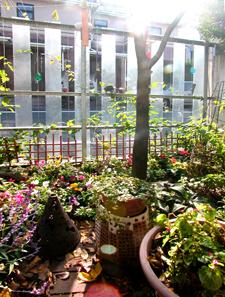 yukigaya_garden.jpg